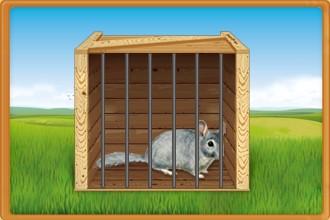Los roedores abandonados