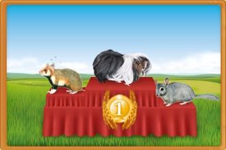 Clasificación de los criadores de roedores por días de presencia